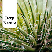 Deep Nature de Massage Tribe