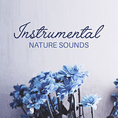 Instrumental Nature Sounds de Nature Sounds Artists
