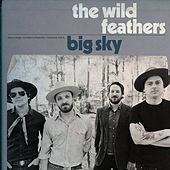 Big Sky de The Wild Feathers