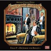 Folge 29: Die Junker von Reigate von Sherlock Holmes - Die geheimen Fälle des Meisterdetektivs