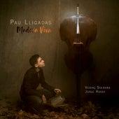 Madera Viva by Pau Lligadas