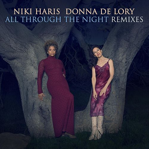 All Through the Night Remixes by Niki Haris