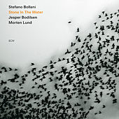 Stone In The Water by Stefano Bollani Trio