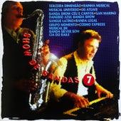 Show de Bandas, Vol. 7 de Various Artists
