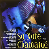 Só Xote e Chamamé, Vol. 2 by Various Artists