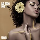 Big Room Diary, Vol. 3 by Various Artists