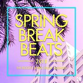 Spring Break Beats 2018 (The Biggest Spring Break Madness) von Various Artists