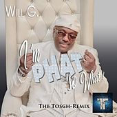 I'm Phat so What (The Tosch Remix) de Will G.