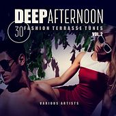 Deep Afternoon (30 Fashionterrasse Tunes), Vol. 2 by Various Artists