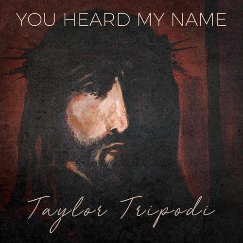 You Heard My Name by Taylor Tripodi