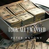 Took All I Wanted de Peter Antony