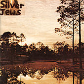 Starlite Walker by Silver Jews