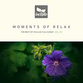 Moments of Relax, Vol. 4 by Various Artists