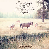 Sometimes I Wish We Were An Eagle di Bill Callahan