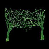 Rtz by Six Organs Of Admittance