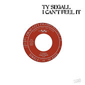 I Can't Feel It by Ty Segall