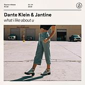 What I Like About U de Dante Klein