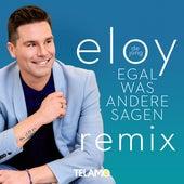 Egal was andere sagen (Remix) von Eloy de Jong