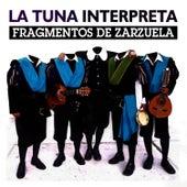 La Tuna Interpreta