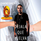 Dejala Que Vuelva (Cover) de Diamond Danger