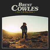 How to Be Okay Alone by Brent Cowles