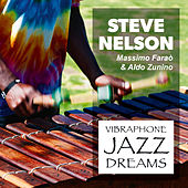 Vibraphone Jazz Dreams by Steve Nelson