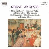 Great Waltzes de Various Artists