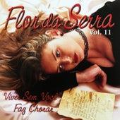 Viver Sem Você Faz Chorar, Vol. 11 de Flor Da Serra