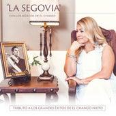 Tributo a los Grandes Éxitos del Chango Nieto de Andres Segovia