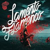 Lamento Flamenco by Various Artists