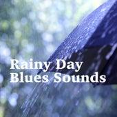 Rainy Day Blues Sounds de Various Artists
