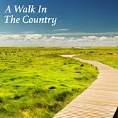 A Walk In The Country von Various Artists