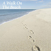 A Walk On The Beach de Various Artists