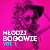 Młodzi bogowie vol. 1 by Various Artists