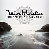 Nature Melodies for Spiritual Calmness de Nature Sound Collection