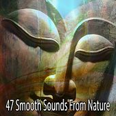 47 Smooth Sounds From Nature von Entspannungsmusik