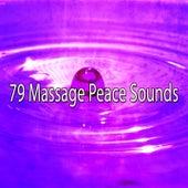 79 Massage Peace Sounds von Massage Therapy Music