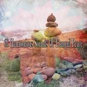 63 Harmonious Sounds Of Tranquil Peace de Meditación Música Ambiente
