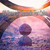 80 Remedy Sounds For Calm von Lullabies for Deep Meditation