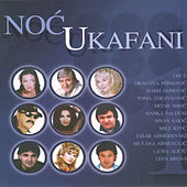 Noc U Kafani Vol. 1 de Various Artists