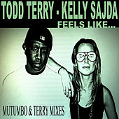 Feels Like - Mutumbo & Terry Mixes by Todd Terry