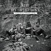 My Sweet Love by Reef
