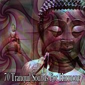 70 Tranquil Sounds For Harmony de Zen Meditation and Natural White Noise and New Age Deep Massage