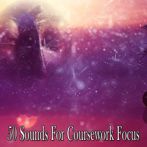 50 Sounds For Coursework Focus by Music For Meditation