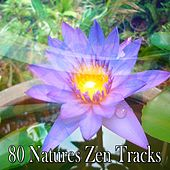 80 Natures Zen Tracks de Zen Meditate
