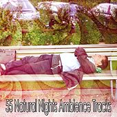 55 Natural Nights Ambience Tracks by Ocean Sounds Collection (1)
