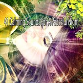 41 Calming Sounds For A Peaceful Night by Nature Sound Series