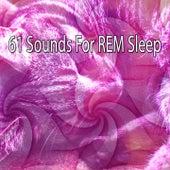 61 Sounds For REM Sleep by Deep Sleep Music Academy