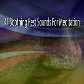 41 Soothing Rest Sounds For Meditation von Entspannungsmusik