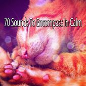 70 Sounds To Encompass In Calm von Best Relaxing SPA Music